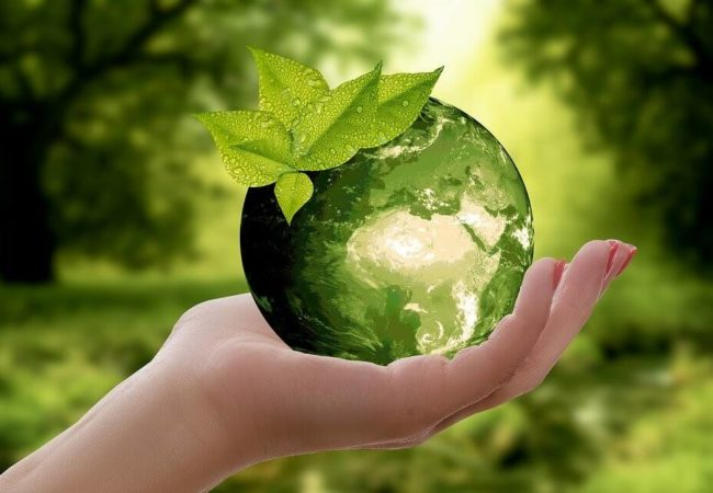 What is sustainable marketing, and how can you use it?